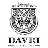 David Gin